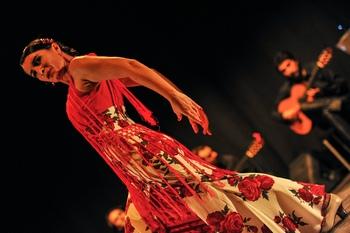 Ballerina di flamenco durante uno spettacolo