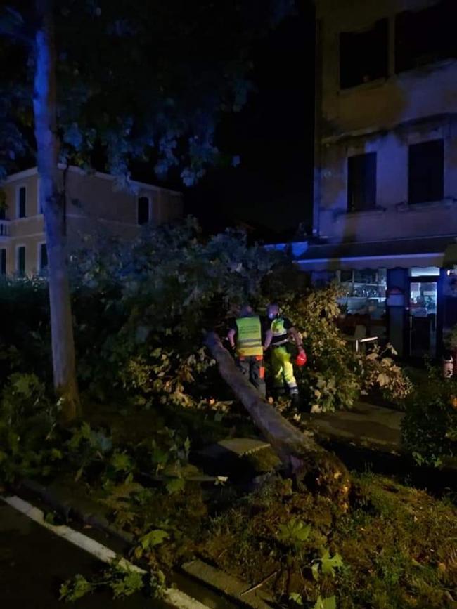 16 Agosto: I volontari sono impegnati a rimuovere alberi e rami caduti con il gran vento