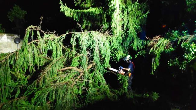 16 agosto: nella notte i volontari esperti e formati nell'uso della motosega sono intervenuti per rimuovere gli alberi caduti con il forte vento